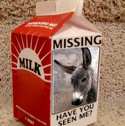 missing wii milk carton lg copy