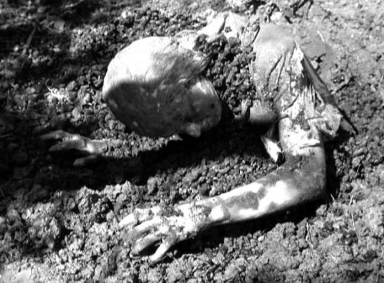 mummys curse 560x413