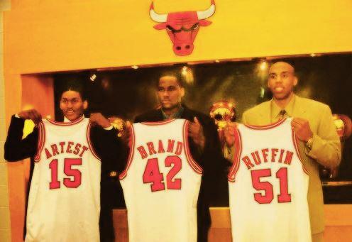 brand artest bulls