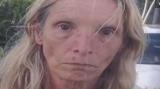 missing woman 560x313