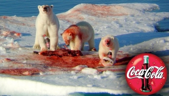 232156d1291585241 polar bear attack coca cola polar bears 560x318