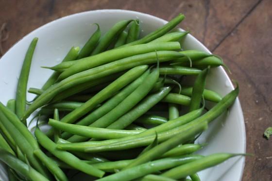 beans 560x373