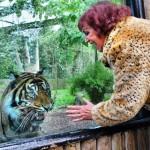 Animal Print Onesies Have Been Banned from an English Zoo