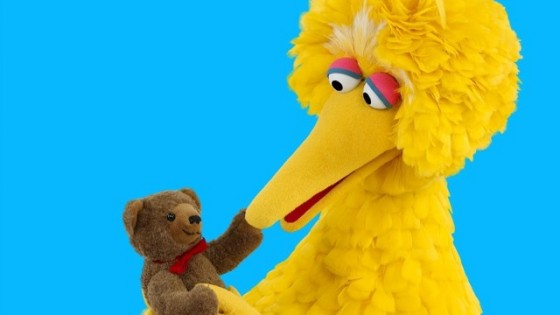 Big Bird blurb jpg 560x315