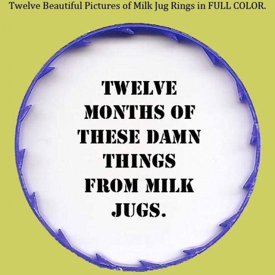 milk 560x560