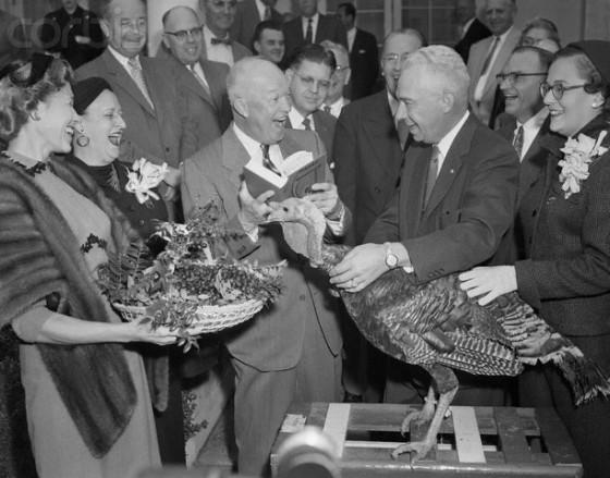 President Eisenhower Turkey 560x439