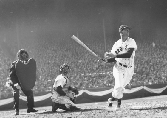 ted williams 560x398