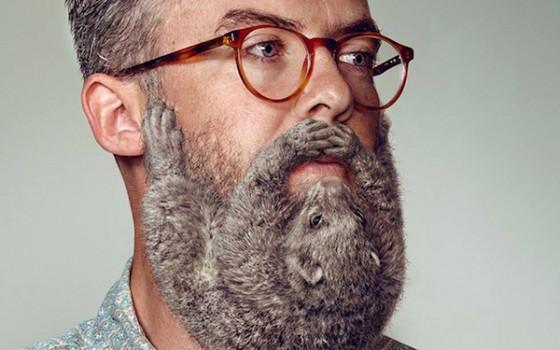 Animal Beard 1 560x350
