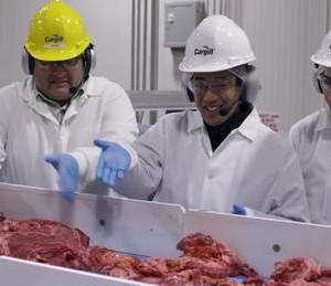 How McDonald's Hamburger Patties Are Made