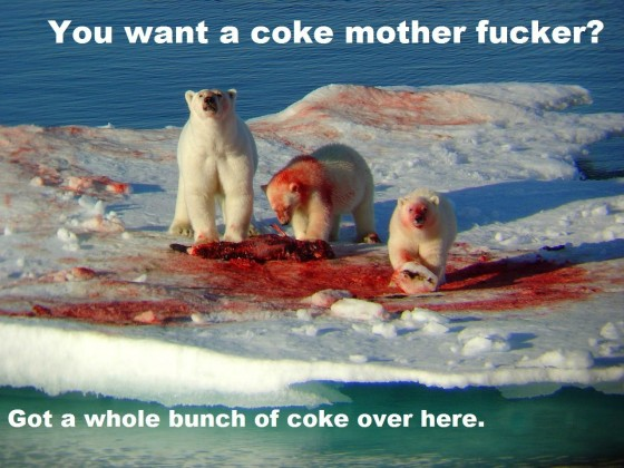 you want a coke motherfucker polar bears 560x420