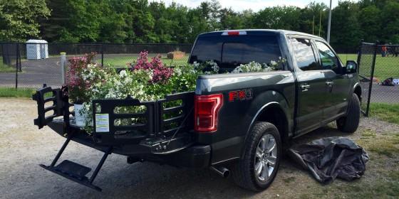 F150 Plants 560x280