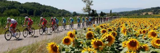 Tour de France 560x188