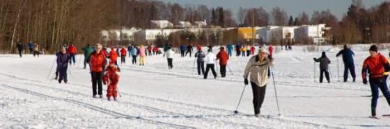 Skiing 560x186