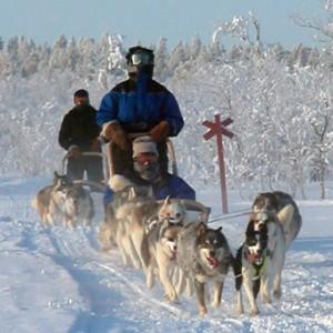 Five Fun Travel Activities in Helsinki