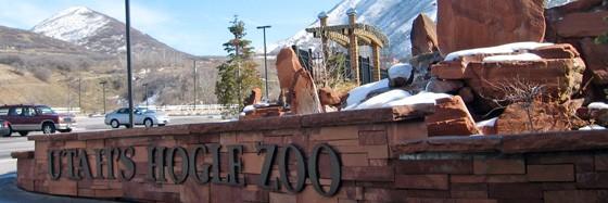 Zoo 560x187