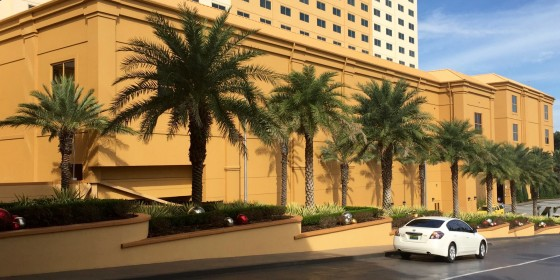 Golden Nugget Biloxi Trees 560x280