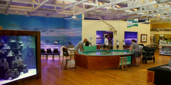 Marine Science Center 560x280