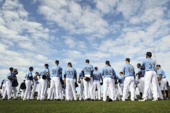 Tampa Bay Rays 560x373