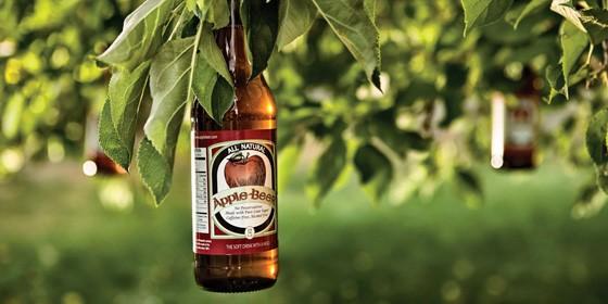 Beer Tree 560x280