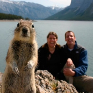 Awesome Animal Photobombs