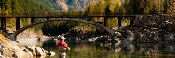 Fishing 560x186