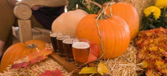 autumn beer 560x255