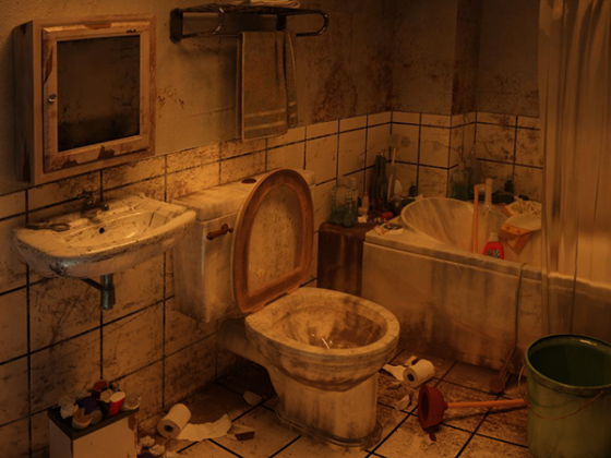 toilet 560x420