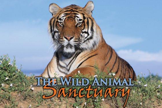 Wild Aninal Sanctuary Header 560x373