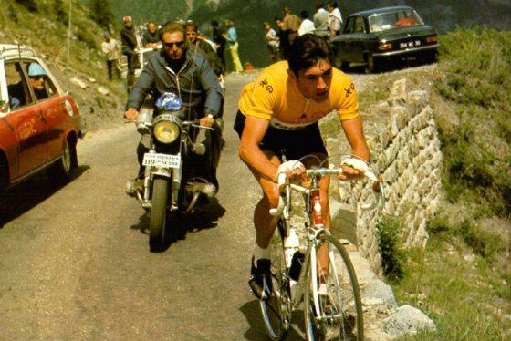 Merckx 560x374