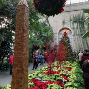 Washington DC Landmarks Botanic Holiday 14 300x300
