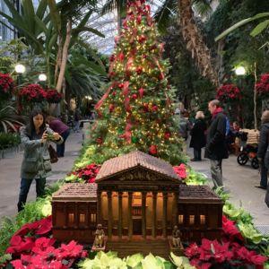 Washington DC Landmarks Botanic Holiday 4 300x300