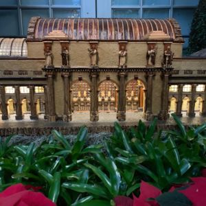 Washington DC Landmarks Botanic Holiday 5 300x300