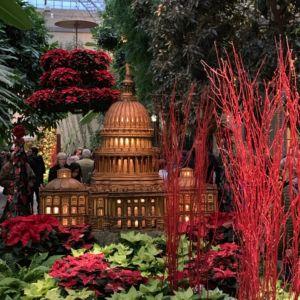 Washington DC Landmarks Botanic Holiday 7 300x300