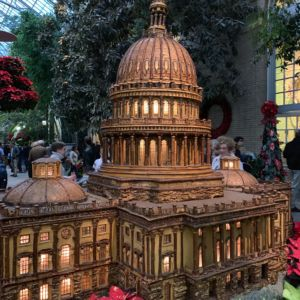 Washington DC Landmarks Botanic Holiday 9 300x300