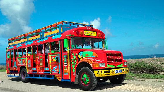Bus 560x315