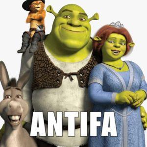 ANTIFA HEROES 29 300x300