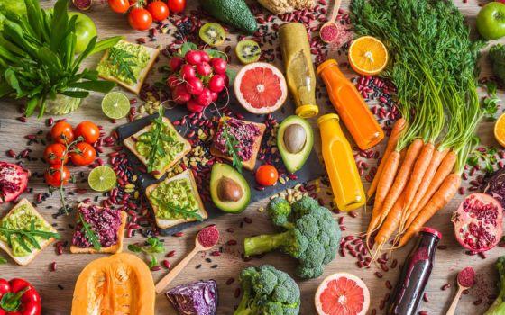 vegan chef tips FTR 560x350