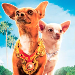 Ten Movies Featuring Talking Dogs (That Aren't Animated)