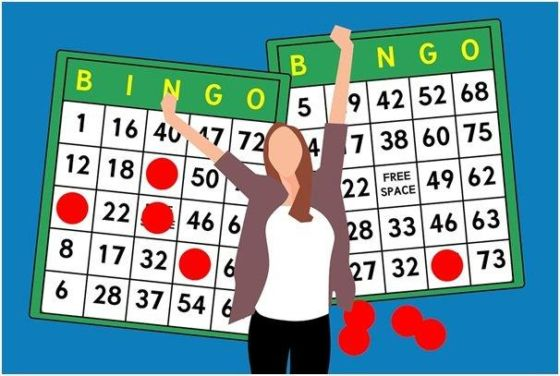 bingo 560x376