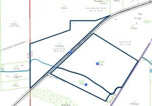 131 acre Dallas Co Skelton tax map