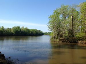 15 acres of land for sale in Dallas County, Alabama