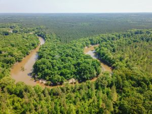 Land for Sale on the Cahaba River in Perry County, Alabama