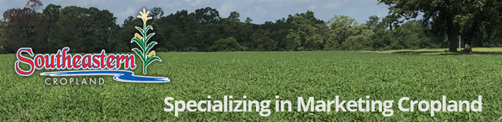 Specializing in Marketing Cropland