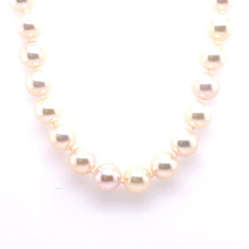 Thacker Jewelry 325-00007