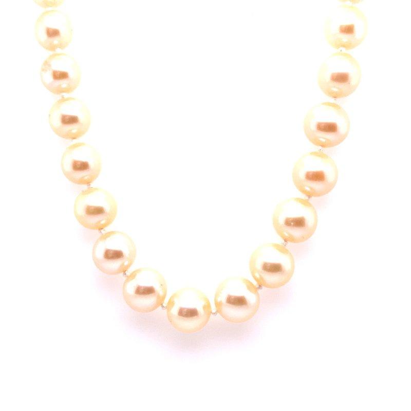 Thacker Jewelry 325-00068