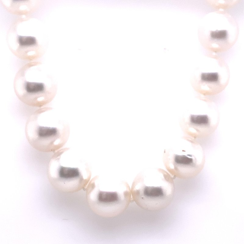 Thacker Jewelry 325-00146