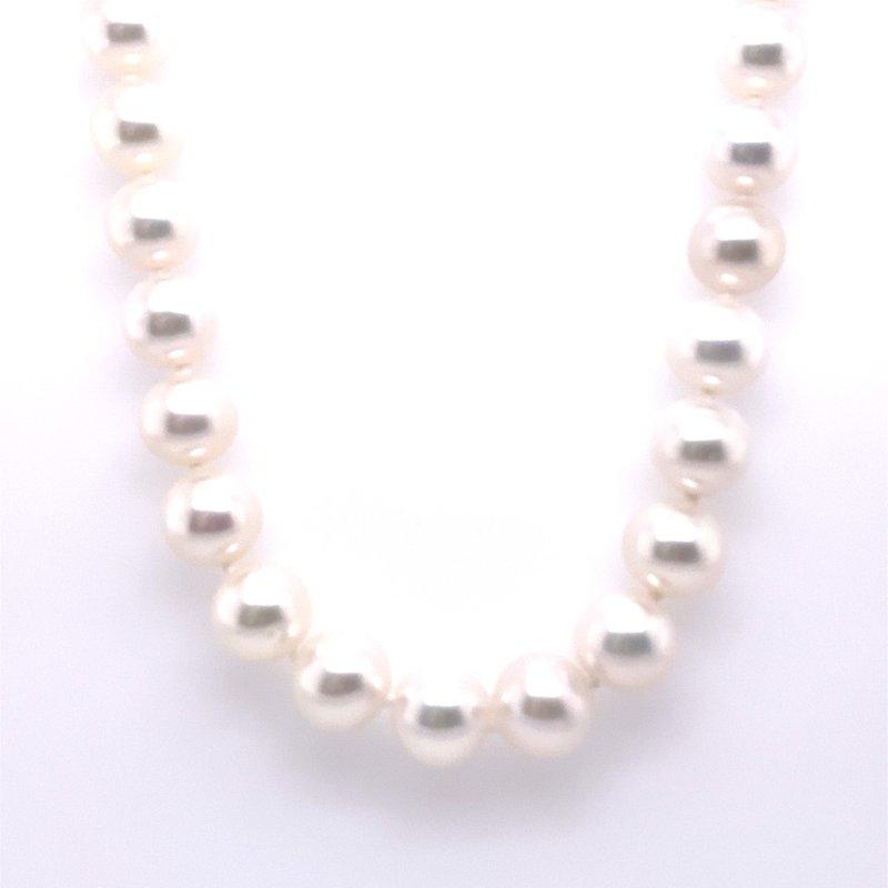 Thacker Jewelry 325-00039