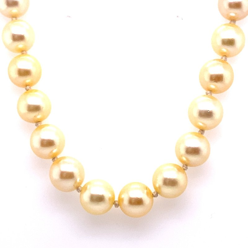 Thacker Jewelry 325-00141