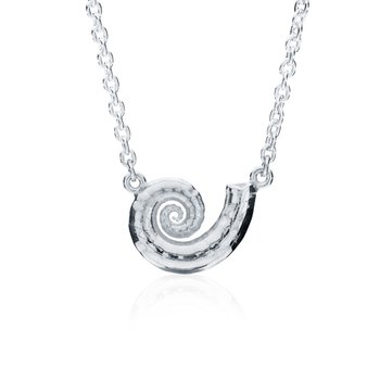 Spirula Shell necklace