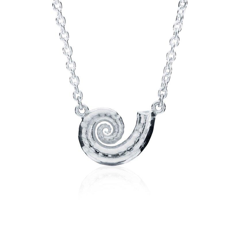Spirula Shell necklace